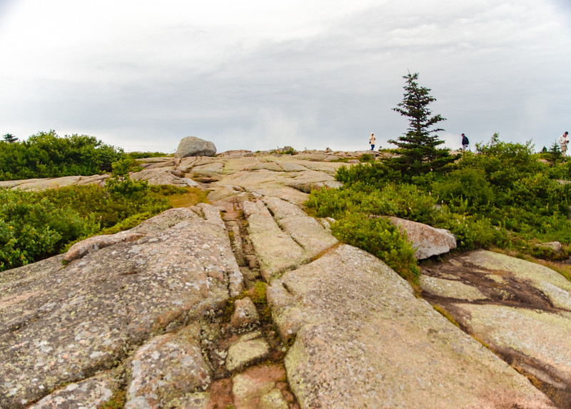Acadia Nat'l Park-Terry's - July 2017-62.jpg