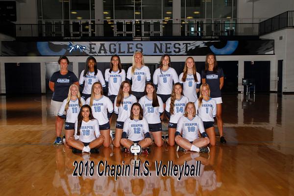 2018 Volleyball Varsity