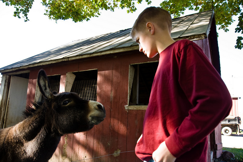My cousin Garrett arguing with a donkey, at Fessenden Farms near Ithaca, NY.
