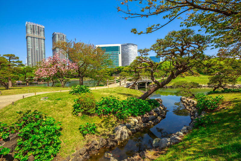 Shiodome from Hama Rikyu Gardens. Editorial credit: Benny Marty / Shutterstock.com