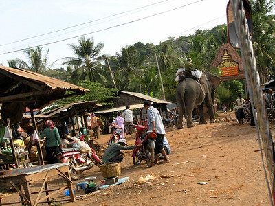 Kampot and Pepperfarm 21.Nov, 08