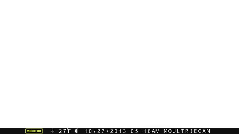 P00[C000-I247-E096@003]R256-G256-B256-(I:86-G000h-L0093)-c81-L512-P(08-0360-1080-0359-1079)LB00-RTC0-A0