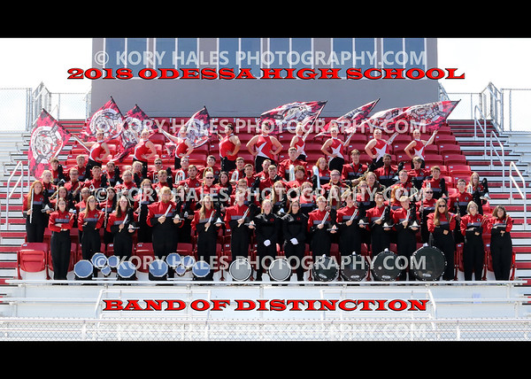 2018 OHS Band of Distinction