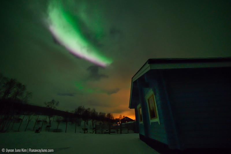 Nov.14_Northern Lights-6107743.jpg