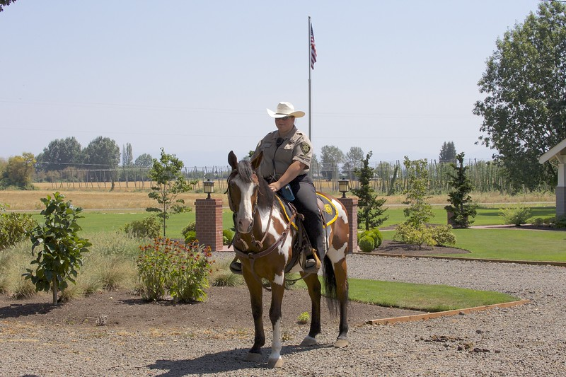 Members of Marion County Sheriff's Posse, USDCHS annual picnic 2014