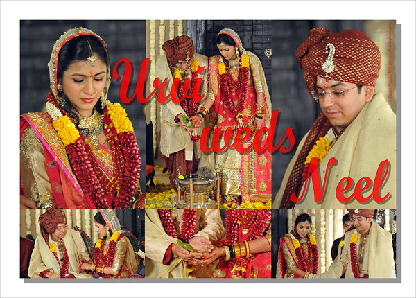Wedding of Urvi & Neel Mehta, Nov 2011
