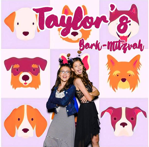 Taylors pawmitzvah-20733.jpg