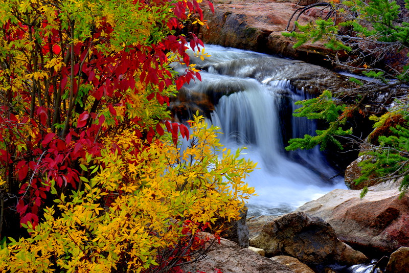 Brilliant-Red-and-Yellow-Fall-Colors-with-Waterfall-Background.JPG