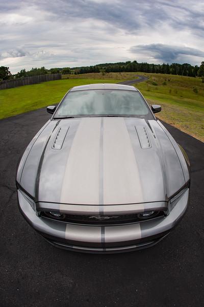 J-Mustang-ABEL9599.jpg