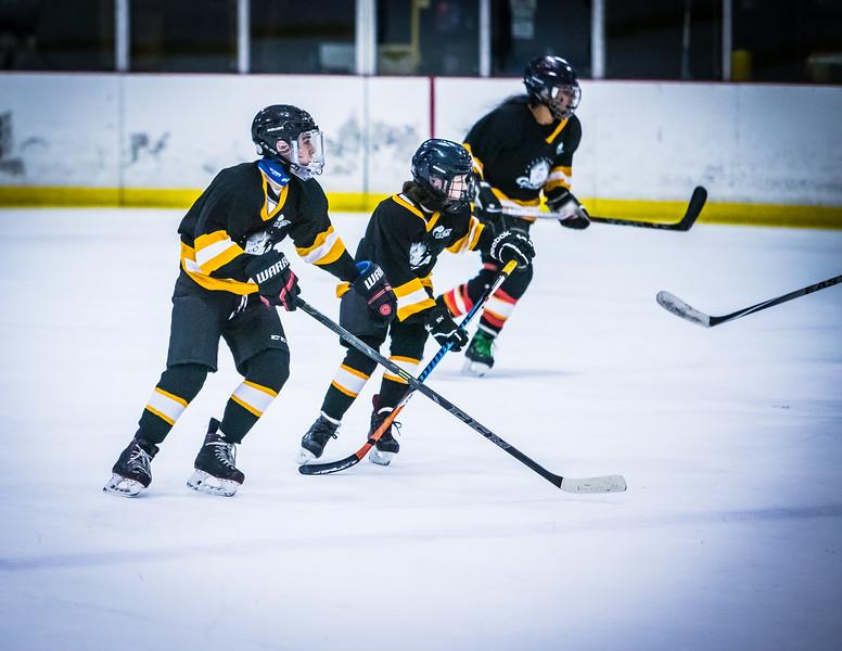 Bruins2-715.jpg