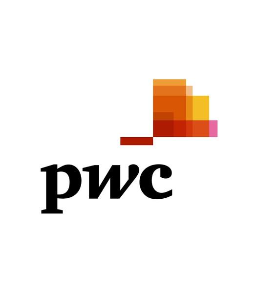 20160620_logotypy_pwc.jpg