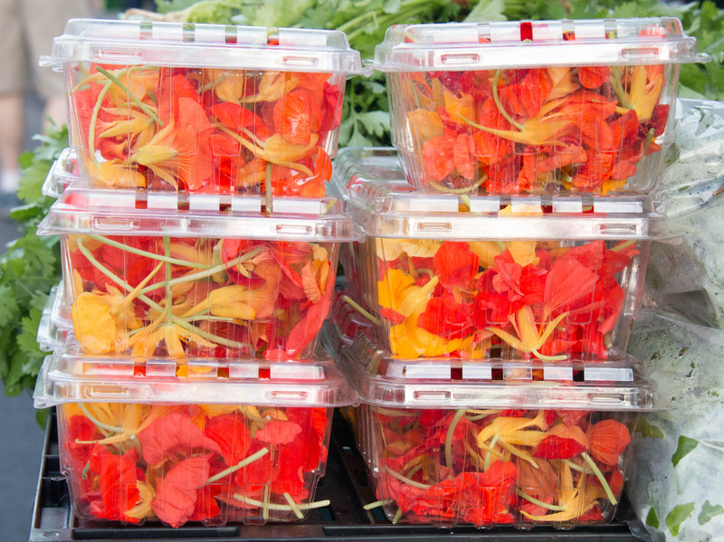Nasturtium flowers are available as a food source. They grow prolifically in the wild in Maui.