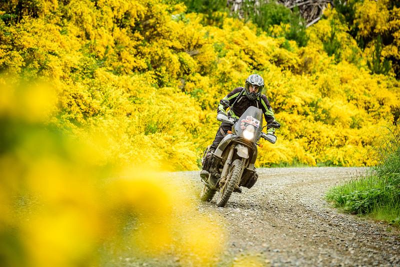 2019 KTM New Zealand Adventure Rallye (374).jpg