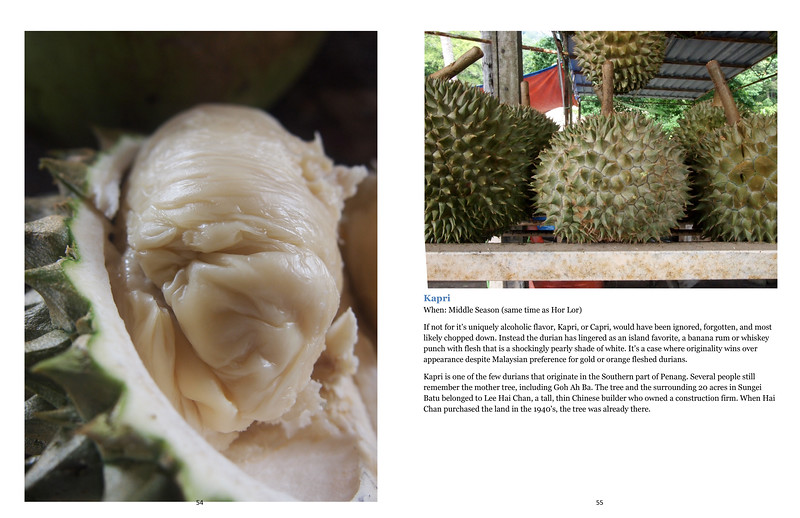 Durian Tourist in Penang,Capri, pg1.jpg