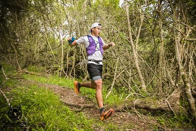 Bos Bok Trail Run 2020