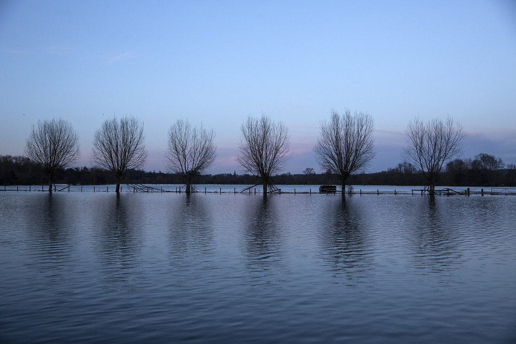 . High flood waters partially submerge trees in a field near the river Thames on February 13, 2014 in Wargrave, England. (Photo by Oli Scarff/Getty Images)