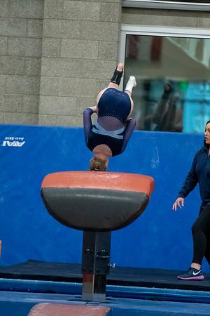 Finals Individual Gymnastics 2019