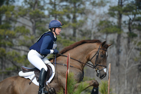 2014 Pine Top Winter Horse Trials, Open Intermediate, February 7, 2014