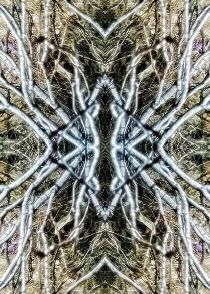 Mirror16-0023 5x7.jpg