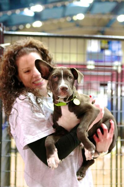 Best Friends Super Adoption Event MUTTography IMG_6168.jpg