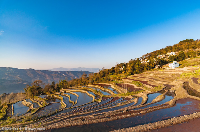 Rice Terraces-5302.jpg