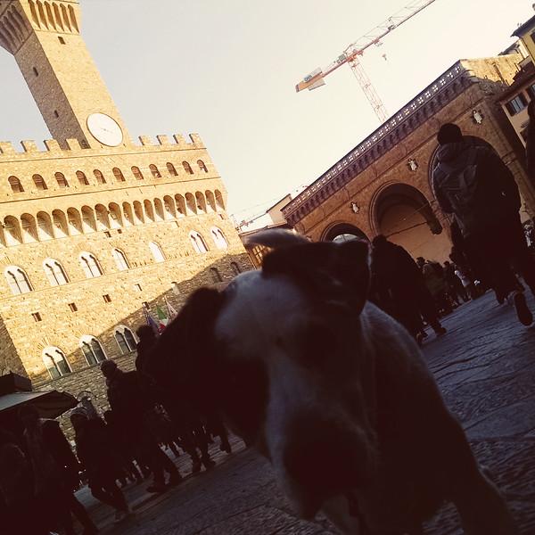 Firenze MOB (87).jpg