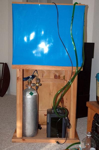 04-2005 26 gallon, initial planting