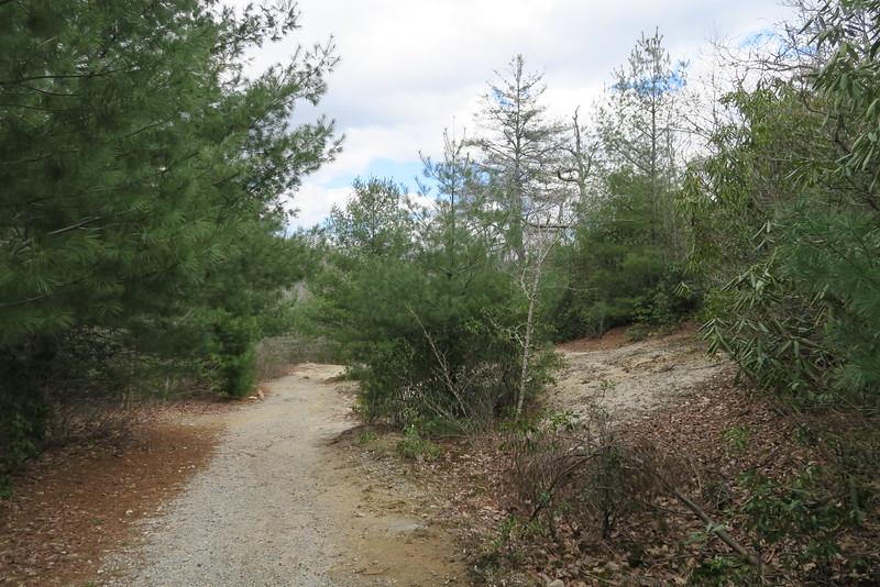 Panthertown Valley Trail - 3,920'