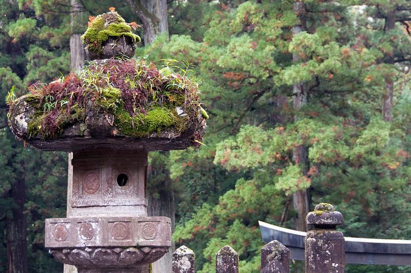 Japan_2010_NAT9058.jpg
