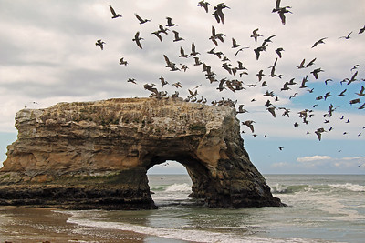 Seascapes of Northern California