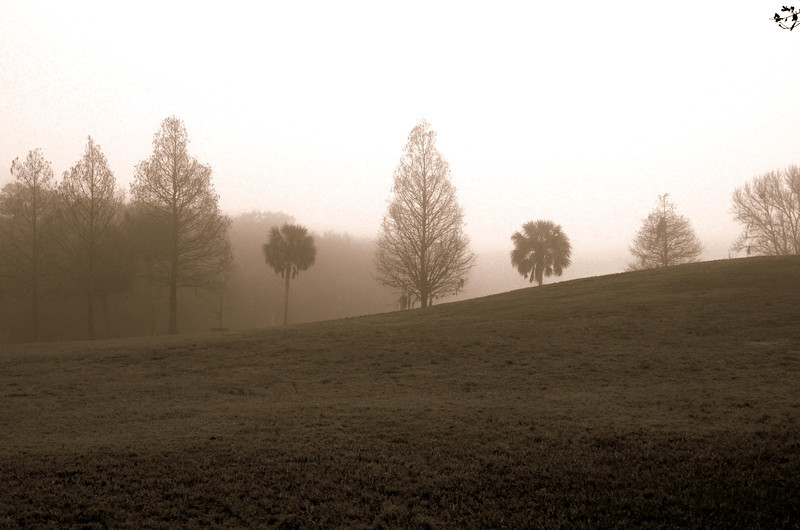 Seminole Park