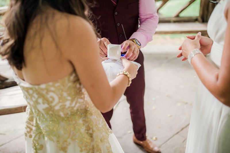 Vicsely & Mike - Central Park Wedding-51.jpg