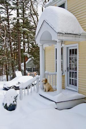 Snow day Jan 27 2011