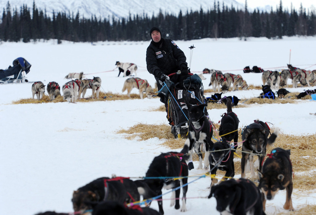 . Ken Anderson departs the Finger Lake checkpoint in Alaska during the Iditarod Trail Sled Dog Race on Monday, March 4, 2013. (AP Photo/The Anchorage Daily News, Bill Roth)