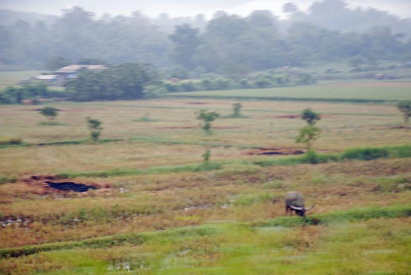 Pictures 08 10-07-08 thru 11-14-08 056_edited-1.JPG