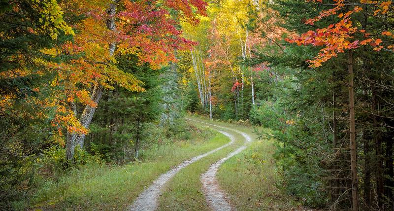 UP 17 Senny Reserve Road- - Copy.jpg