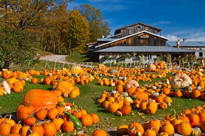 Pumpkin Farms and Pumpkin Barns
