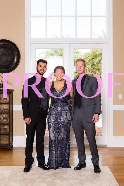 Prom 2019-103.jpg