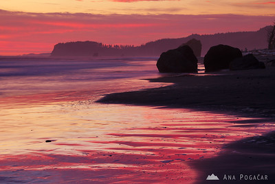PNW Coast