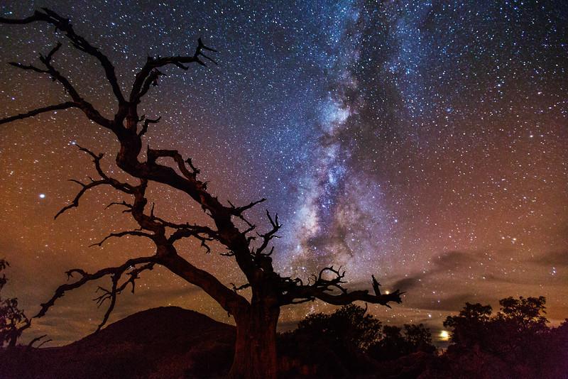 Mauna Kea Starscape