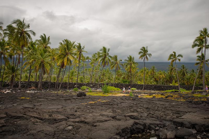 Hawaii2019-370.jpg