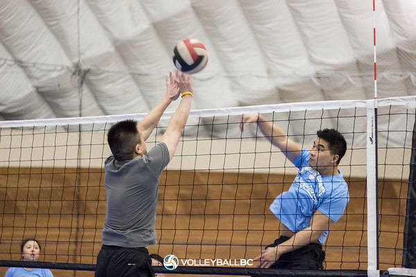 2015 Adult Indoor League Photos