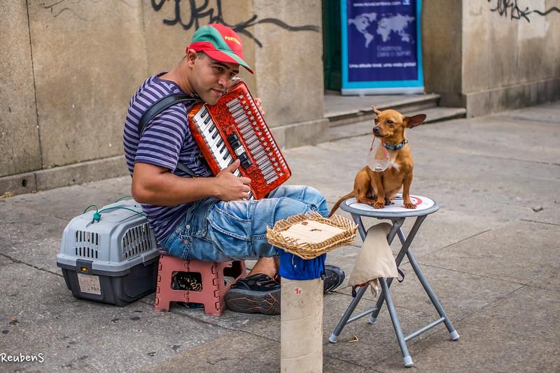 Street musician and dog.jpg