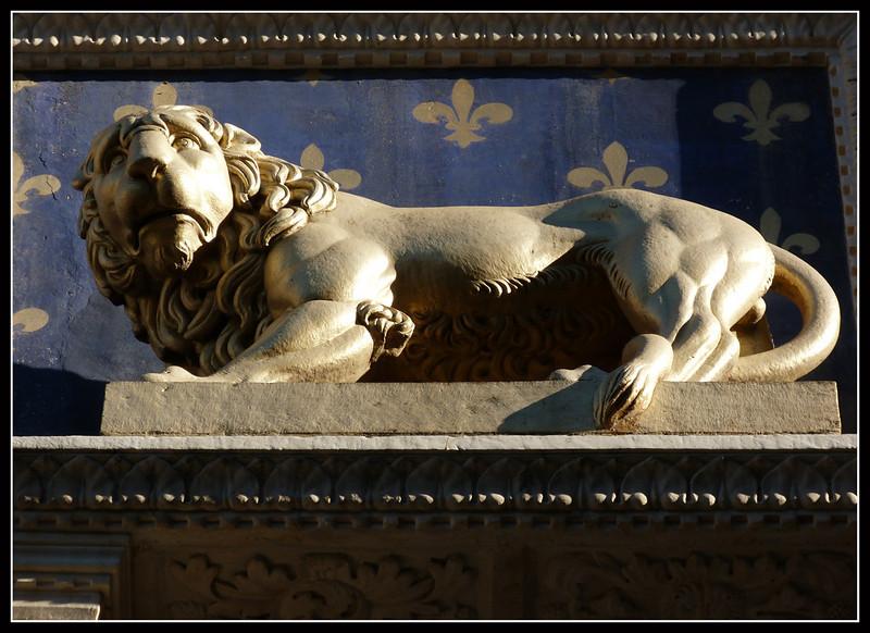 2011-12 Firenze B125.jpg