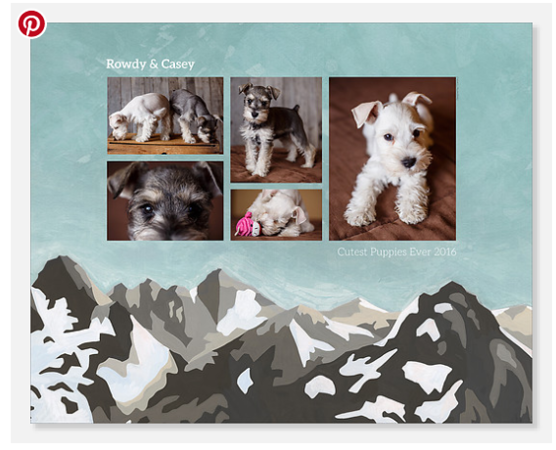 Pet Photo Products