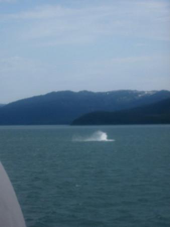 Southeast Alaska to Whittier 2013
