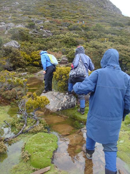 The trail got wet again...