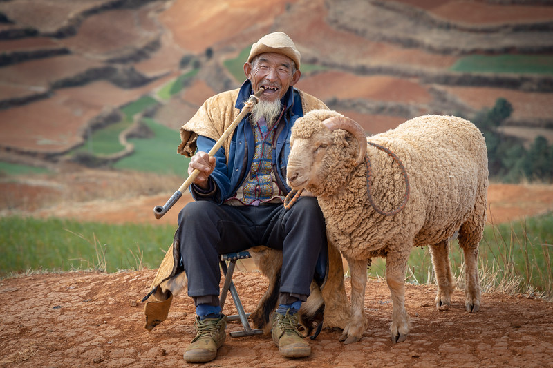 Yunnan, Chinese Tour with Mr. Maa,  LuoPing to see the muster seed bloom  We then traveled to Red Soil City, Hoan Tu Di,