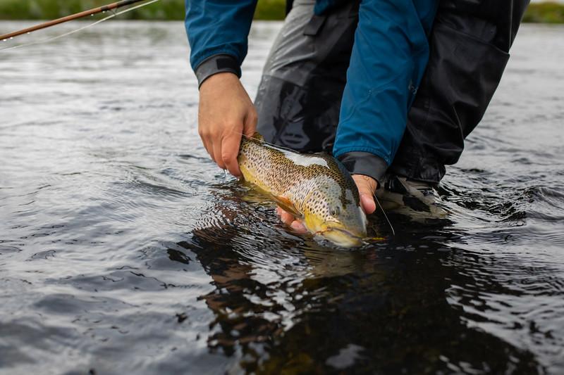 holknaicelandatlanticsalmonflyfishing.bencarmichael (24 of 343).jpg