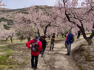 Cerro Salchicha, Haza del Lino, Sierra de Contraviesa
